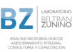 logo-BZ-con-detalle